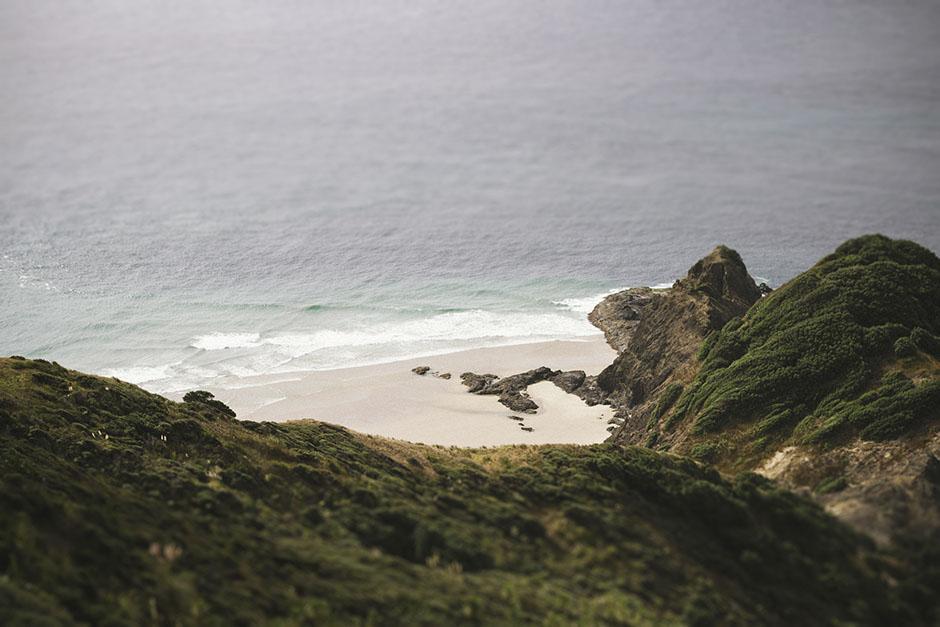 Rachel Walker. Bay of Islands, New Zealand. 20