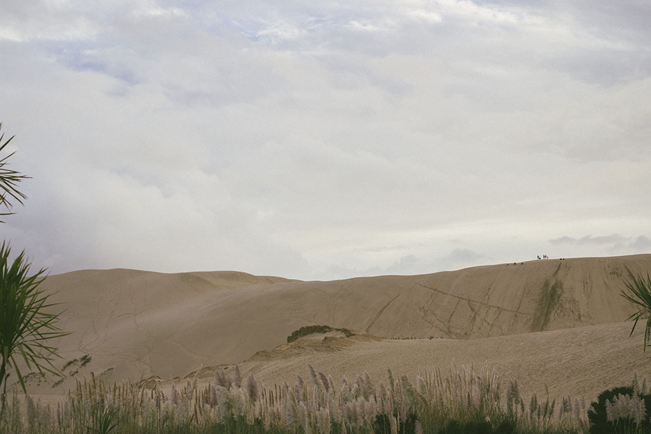 giant sand dunes.. so much steeper than a photo could convey.
