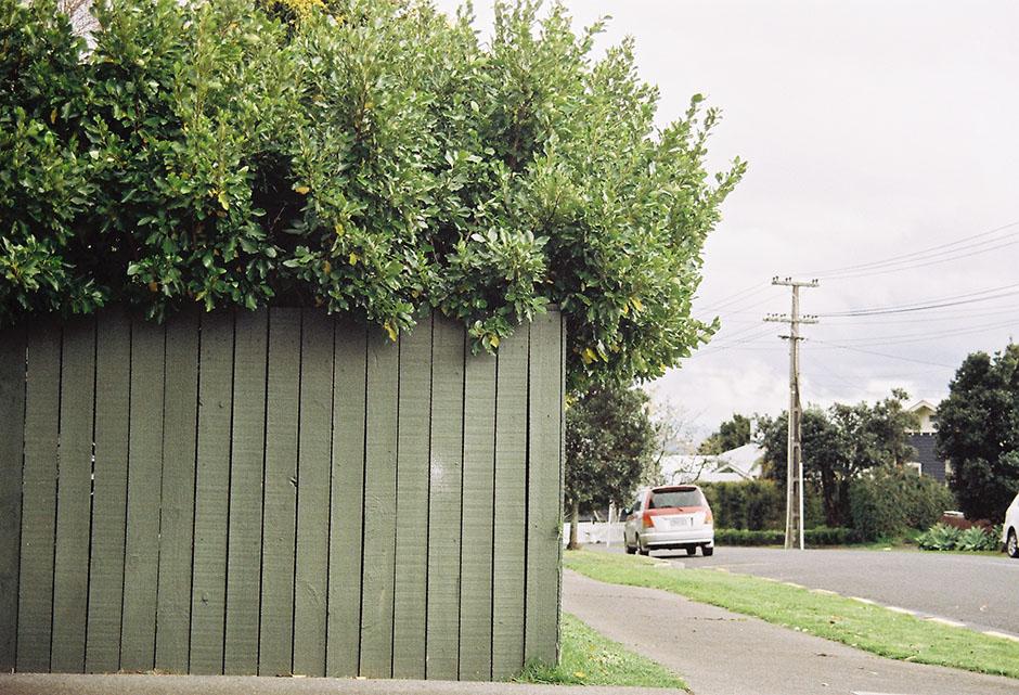 Rachel Walker. Test Film. Pentax K1000. Auckland, New Zealand.17